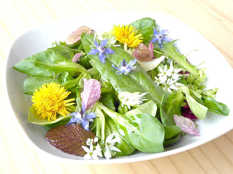 Salade de fleurs comestible
