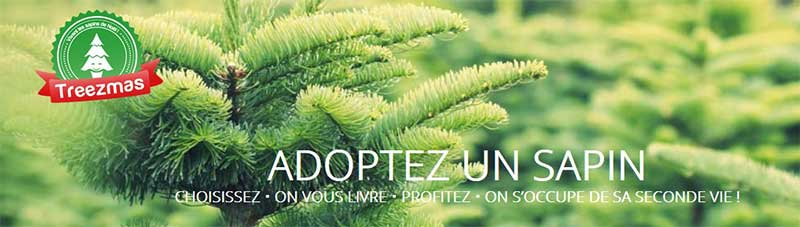 latelier_green_adopte_sapin_de_noel_treezmas