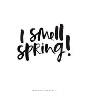 Hello Spring  douceur petites fleurs et coquelicots Joyeux printempshellip