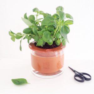 Vous en avez assez de tuer vos plantes ? gthellip