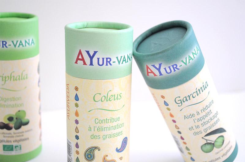 L'ayurvéda en diététique : Le programme Ayur-vana