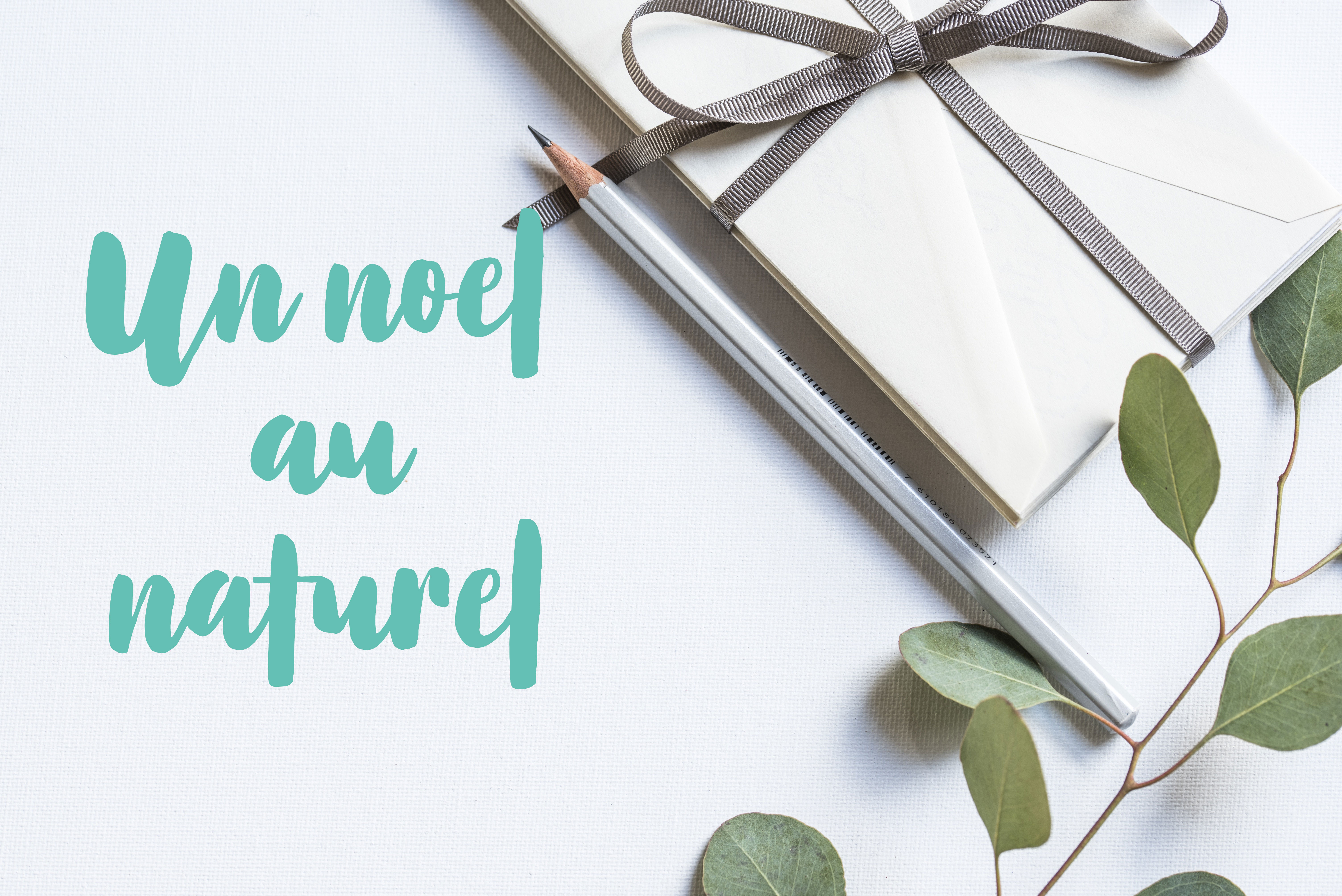 Envie de passer un noël au naturel ? Découvrez ma sélection de DIY et d'idées de cadeaux pour une fête plus responsable.